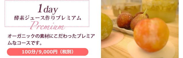 1day酵素ジュース作り Premium